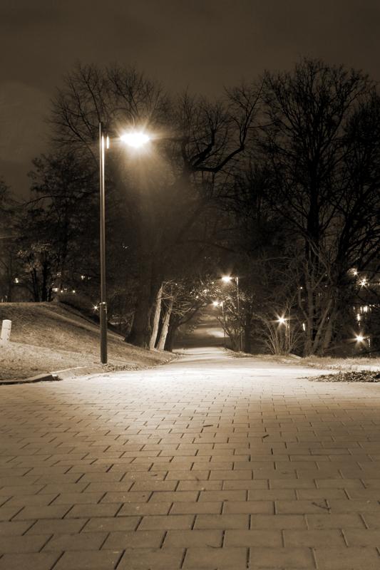 Park we Wrocławiu - numer katalogowy fototapety W_2071