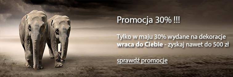promocja-30