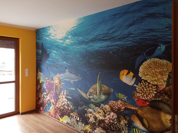 Zdjęcie z montażu fototapety na wymiar z tematem rafy koralowej